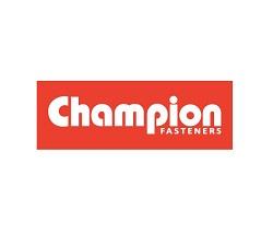 CHAMPION S/PIN 2X22MM ZP